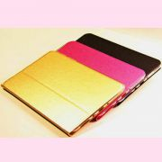 Chehol_Folio_case_for_Apple_iPad_mini_1_2_3_Retina_color.jpg