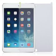 Wrapsol-Protection-bundle-Antiglare-screen-portector-grip-pad-iPad.jpg